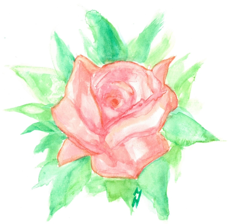 watercolor_rose_nov18